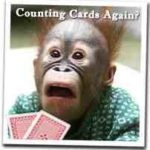 card counting monkey